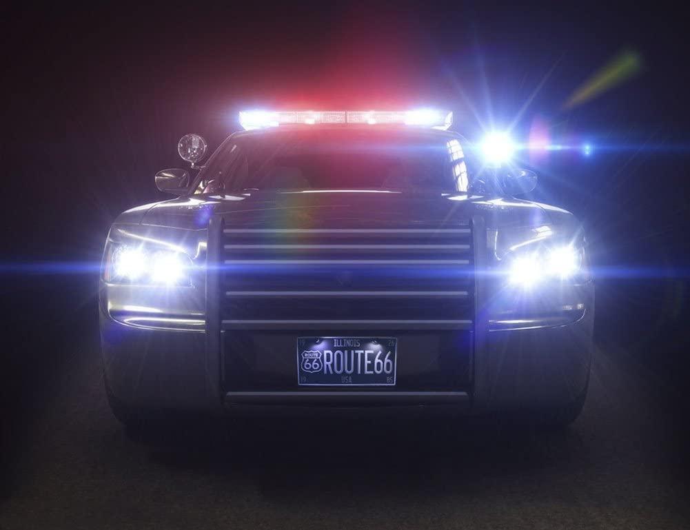 WinPower LED Éclairage plaque immatriculation auto ampoules super brillant CanBus Pas d'erreur 6000K xénon blanc froid 18 SMD Feux arrière